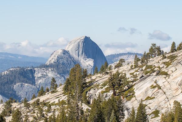 Yosemite Memories 2015